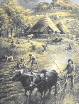 Agricultura celta
