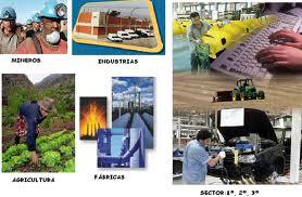 Sectores Económicos | SocialHizo